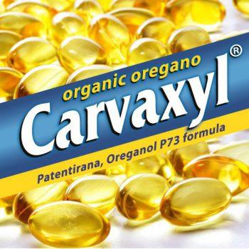 CARVAXYL